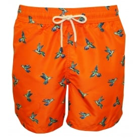 Hummingbirds Traveller Swim Shorts, Orange
