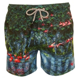 Flamingo Photographic Print Swim Shorts, Blue/Multi
